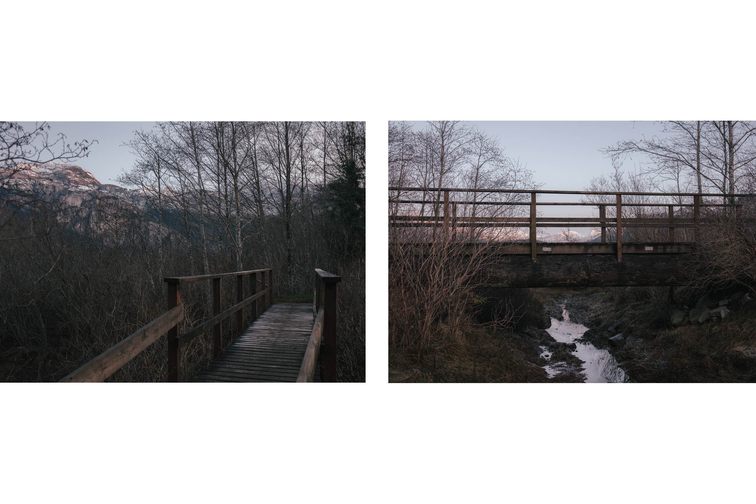 lately_bridge